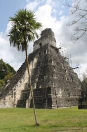 FOTO: Guatemala-pyramida-Tikal