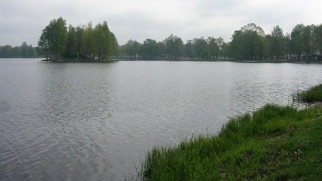 FOTO: Hrubínův rybník Hejtman na Třeboňsku