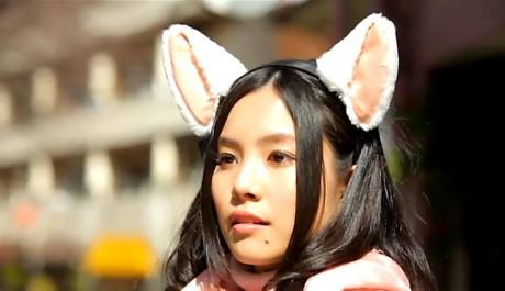 FOTO: Chytré kočičí uši