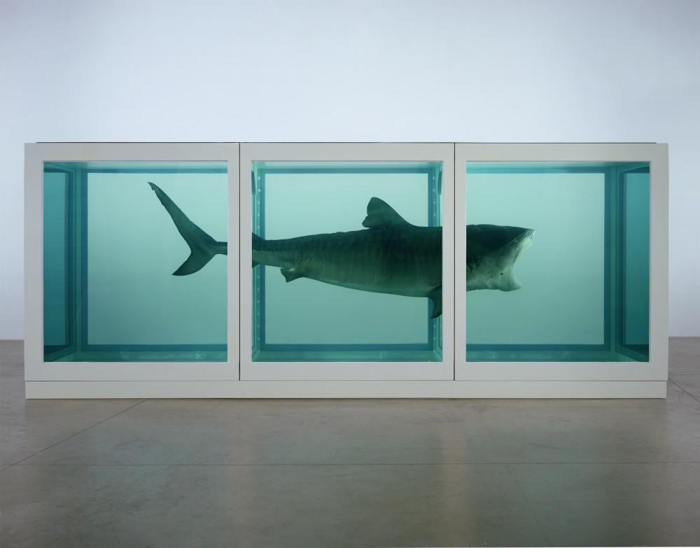 FOTO: Damien Hirst: Fyzická nemožnost smrti v mysli žijících, Zdroj: tate.org.uk