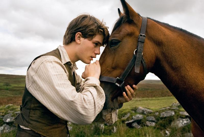 FOTO: Válečný kůň