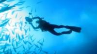FOTO: Potápěč