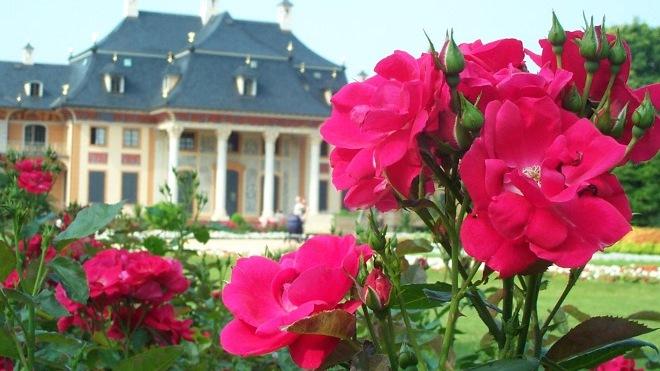 FOTO: palác