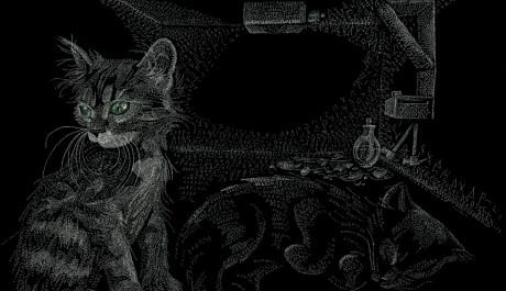 OBR.: Schrödingerova kočka (The Schrödinger's Cat)