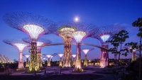 OBR: Singapore Supertrees