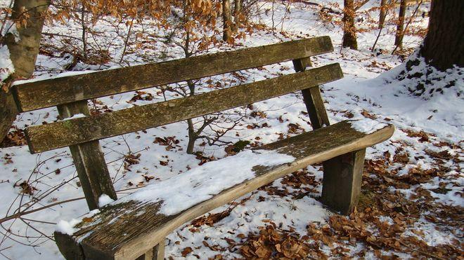 FOTO: Lavička v zimě