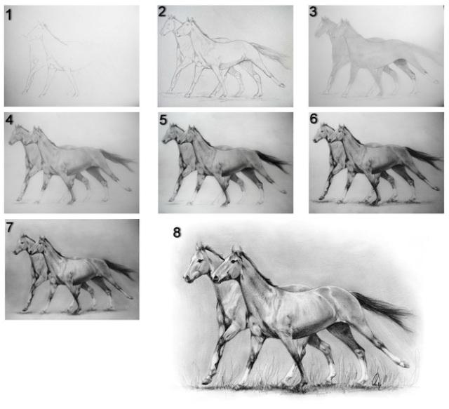 Komplexní postup kreslení. Zdroj: Deviantart.com