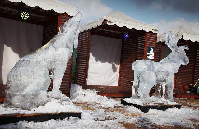 FOTO: Ledové sochy