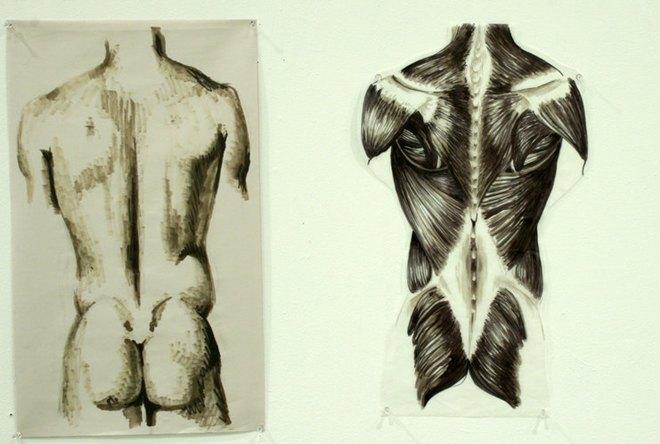 FOTO: anatomie_zad