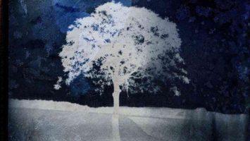 FOTO: vystava_polaroid1
