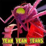 FOTO: Yeah Yeah Yeahs - Mosquito