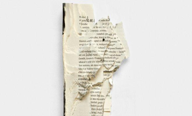OBR: Fernando Báez: Obecné dějiny ničení knih