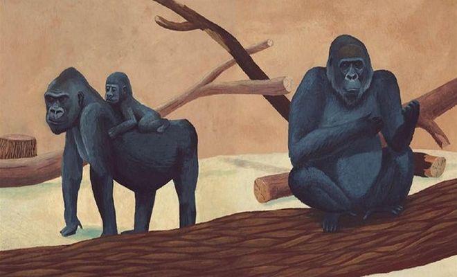 OBR: M. Ždánský, M. Pilátová: Gorilí táta