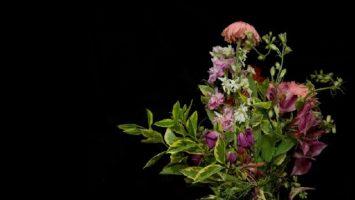 FOTO: Květy zla