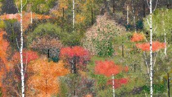 FOTO: pixel