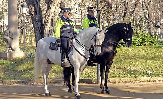 FOTO: Britská policie