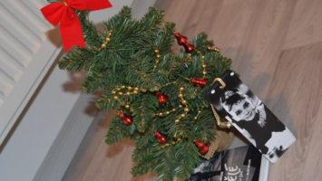 FOTO: Vánoční dárky pro knihomoly