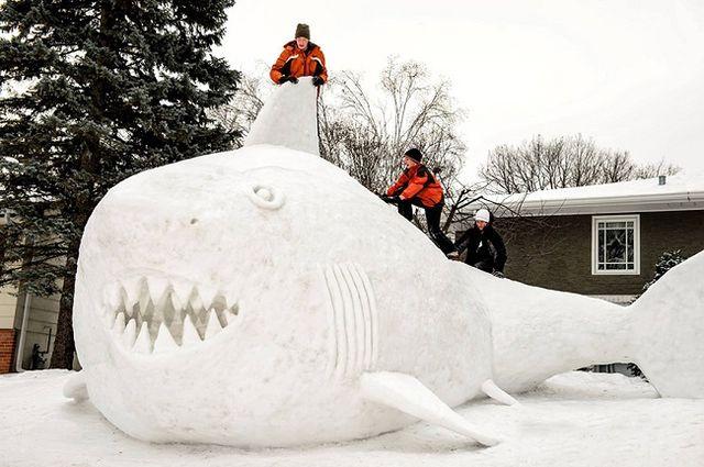 Sněhové sochy - žralok, bratři Bartzové, Zdroj: www.facebook.com/BartzSnowSculptures