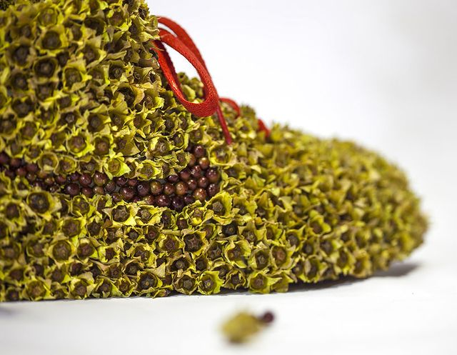 Bota - Nike, Christophe Guinet, Zdroj: www.monsieurplant.com