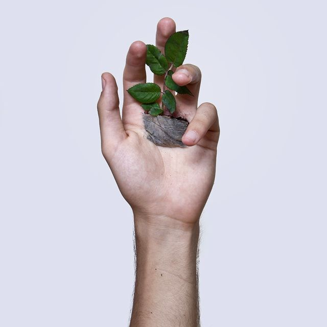David Catá, body art, Zdroj: www.davidcata.com