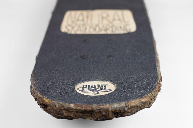 Přírodní skateboard, Christophe Guinet, Zdroj: www.monsieurplant.com