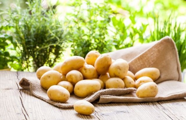 brambory-hromada-dieta