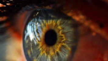 lidem s poskozenim zraku metanolem se vraci zrak oko