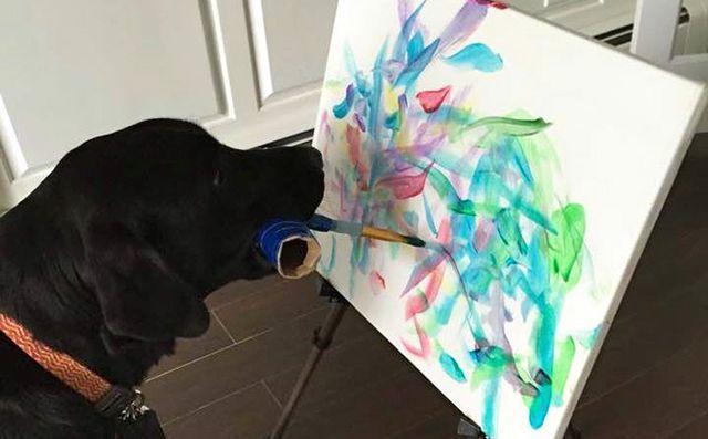pes-maluje-obrazy
