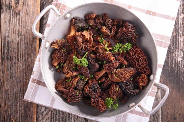 smrz-jak-ho-pripravit-houby-rostouci-na-jare-640