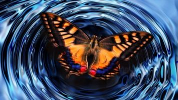 Efekt motýlích křídel